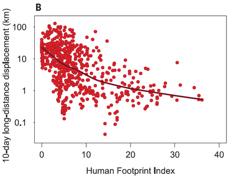 human footprint graph