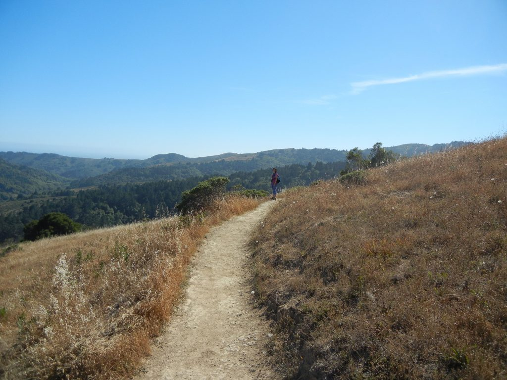 Hiking path in CA